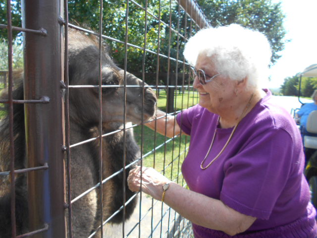 Crown Cypress Assisted Living - Activities - Zoo